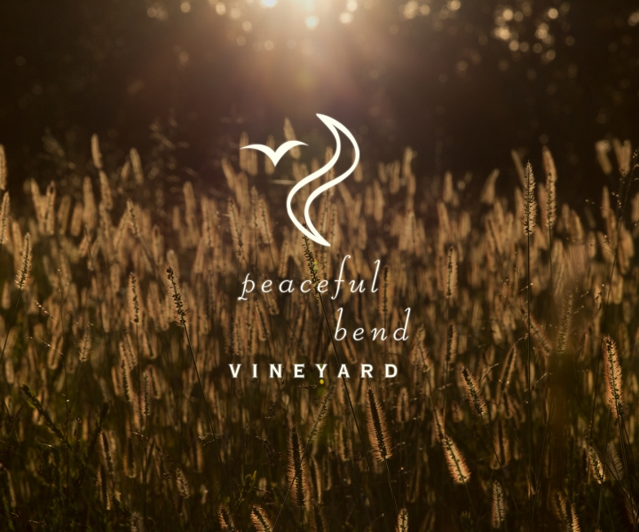 Peaceful Bend Vineyard